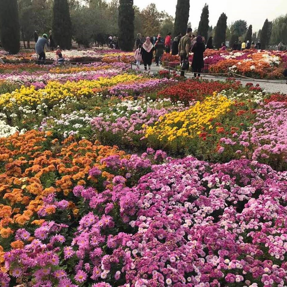 Behrooz Parhami Http Wwwkennethkuhncom Students Ee351 Powersuppliesfilter Botanic Gardens In Karaj Near Tehran Iran