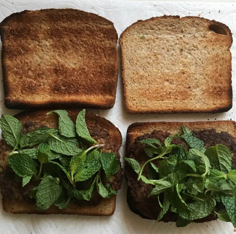 Behrooz Parhami Mercury 110 9 8 Hp Wiring Diagram Cutlet Sandwich With Mint What I Took Along To Eat During Yesterdays Noon Music Concert