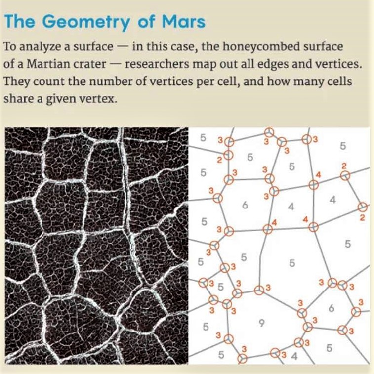Geometry of Martian dunes: Explanation
