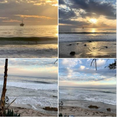 Photos I took during and after yesterday's walk: Giant waves