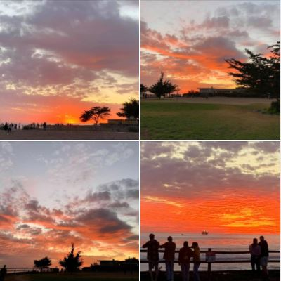 Photos I took during and after yesterday's walk: Late sunset