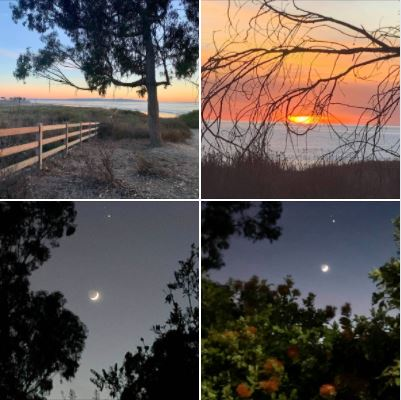 People, trees, the sun, and the moon: Shot last evening from the Ellwood Bluffs and UCSB West Campus: Batch 1
