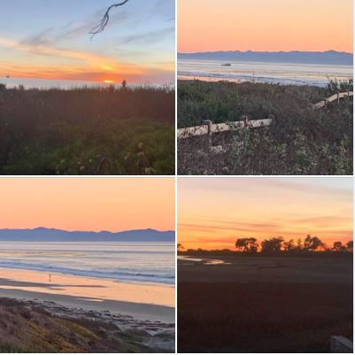 People, trees, the sun, and the moon: Shot last evening from the Ellwood Bluffs and UCSB West Campus: Batch 3