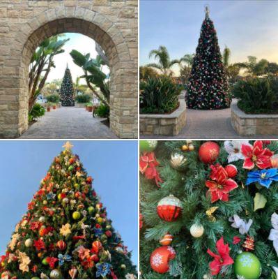 Holiday spirit at Goleta's Camino Real Marketplace: Community Christmas tree