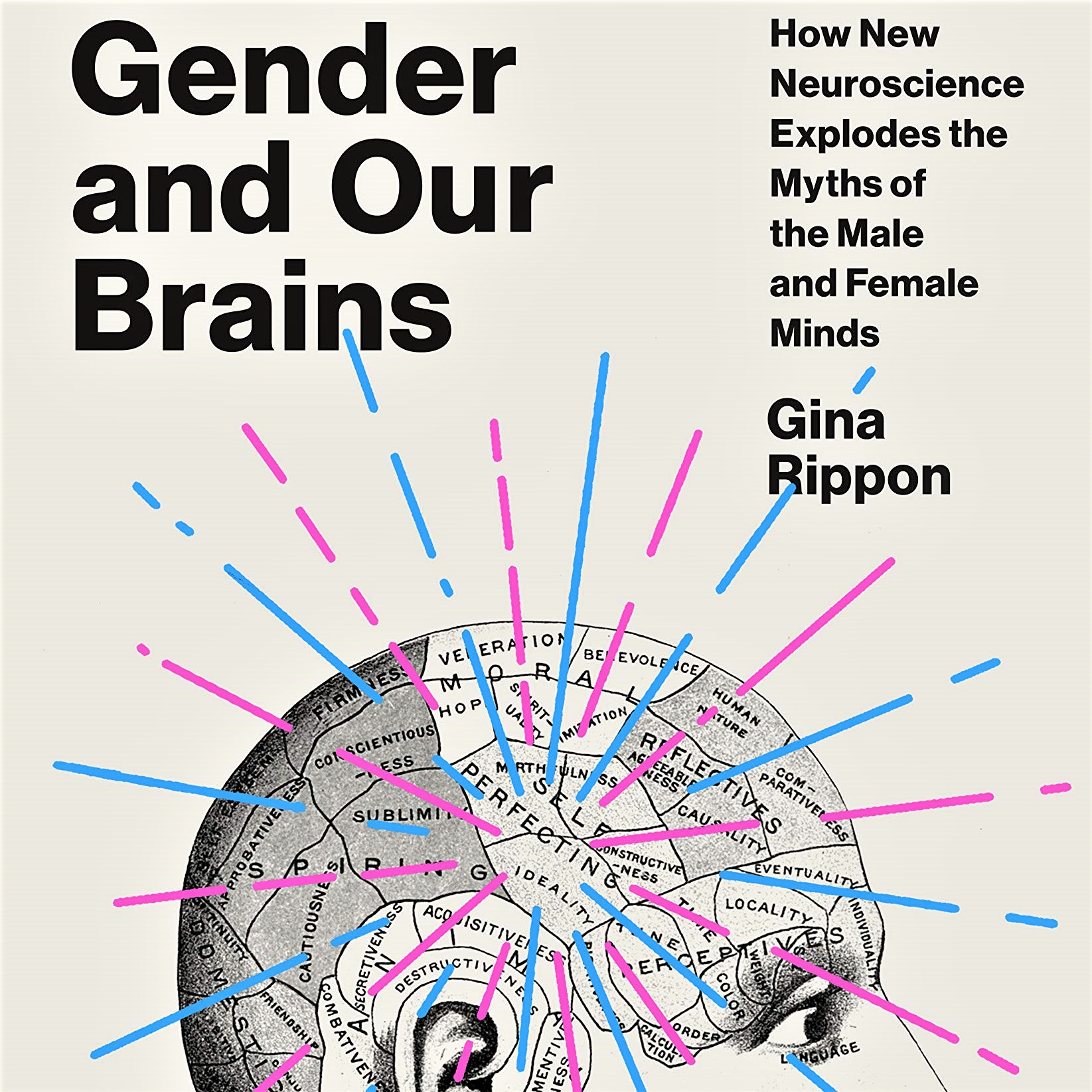 Cover image of Gina Rippon's 'Gender and Our Brain'