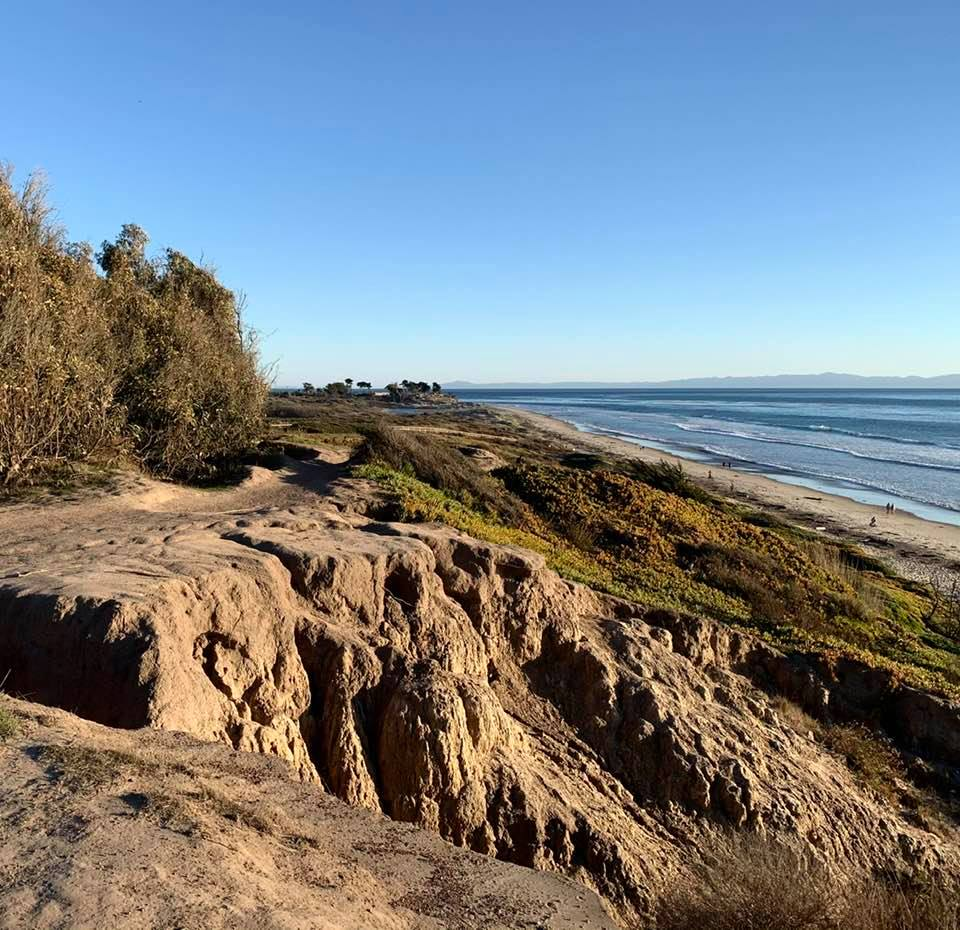 Wednesday 1/20 afternoon, on the majestic Elwood bluffs in Santa Barbara: Photo 3