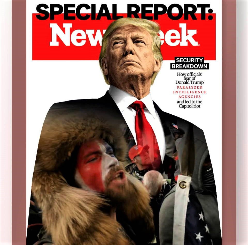 Cover image of Newsweek magazine