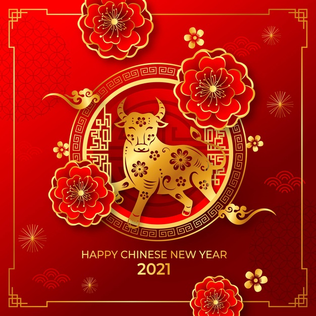 Happy Chinese New Year: Here comes the year of the ox!