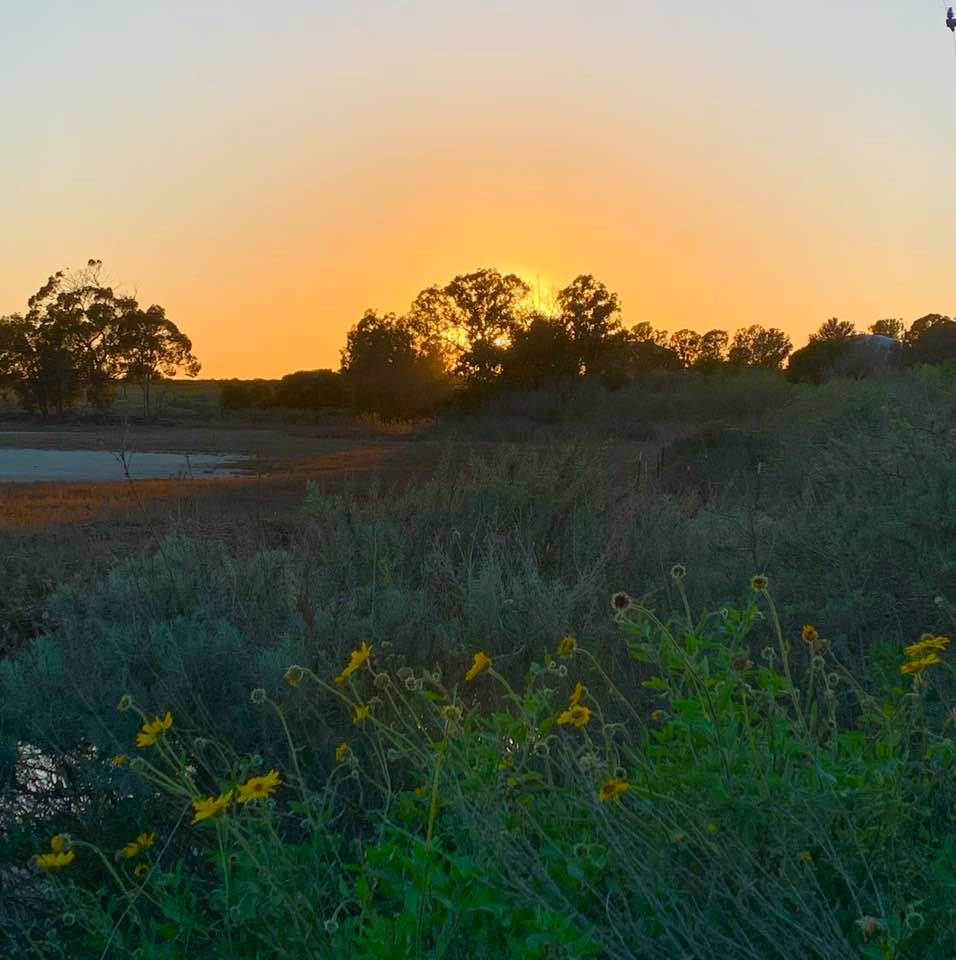 UCSB North Campus Open Space: Photo 2