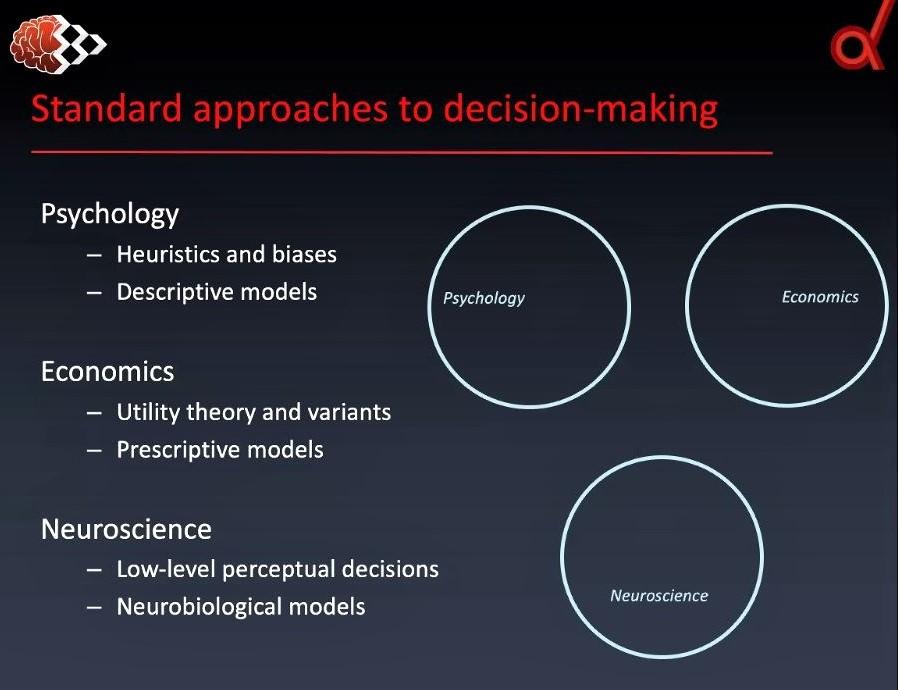 Webinar on social decision-making: Screenshot 1