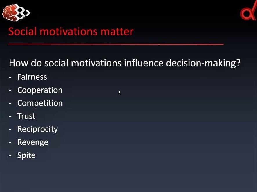 Webinar on social decision-making: Screenshot 2