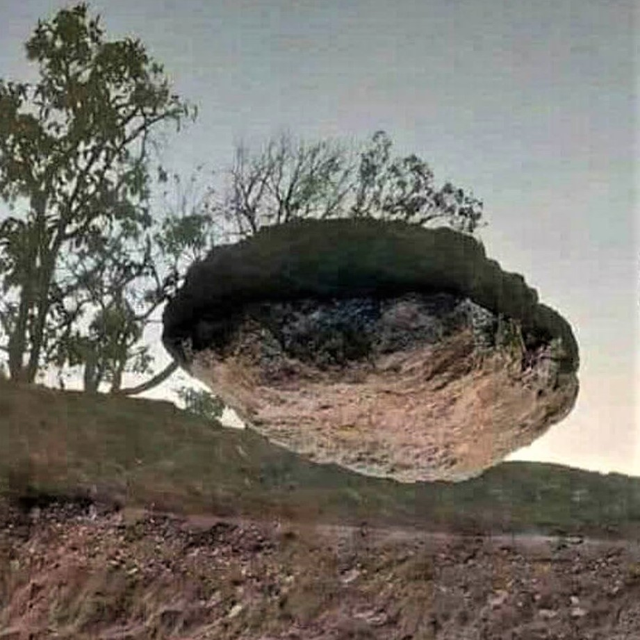 This image isn't PhotoShopped: It's just upside-down!