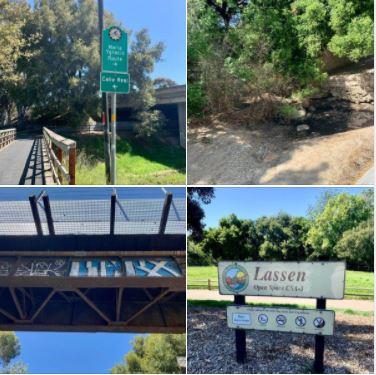 Sunday's walk in the Patterson Avenue area of Goleta (along the Maria Ygnacio Creek)