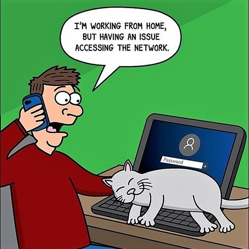 Cartoon: 'I'm working from home, but having an issue accessing the network'