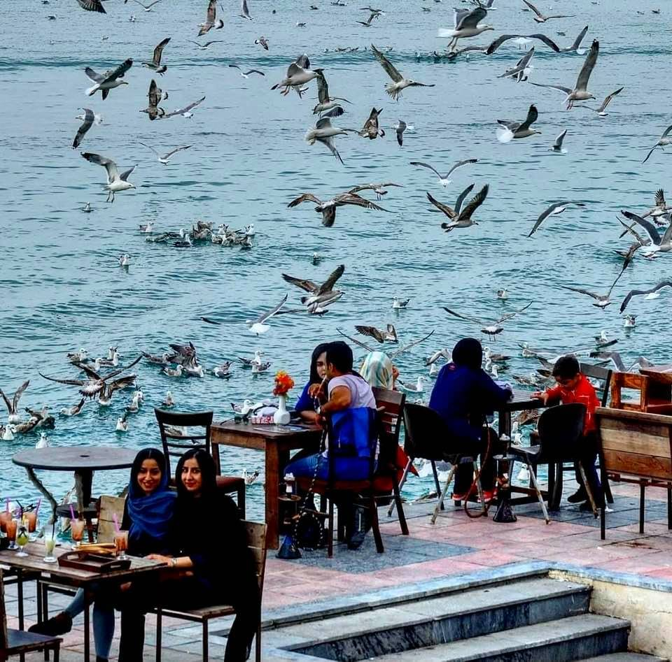 Dining by the Persian Gulf in Bushehr, southern Iran