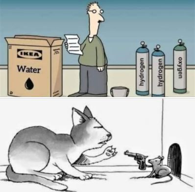 Cartoons: Ikea water, and cat & mouse, 6-rounds vs. 9-lives