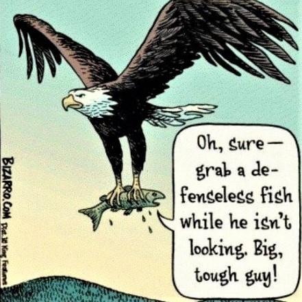 Cartoon: To mock a killing bird