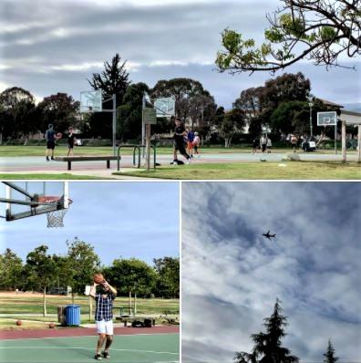 Photos from my Sunday, June 6, walk in Goleta's Girsh Park